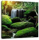 schöner Regenwald in Thailand, Format: 70x70 auf Leinwand, XXL riesige Bilder fertig gerahmt mit Keilrahmen, Kunstdruck auf Wandbild mit Rahmen, günstiger als Gemälde oder Ölbild, kein Poster oder Plakat