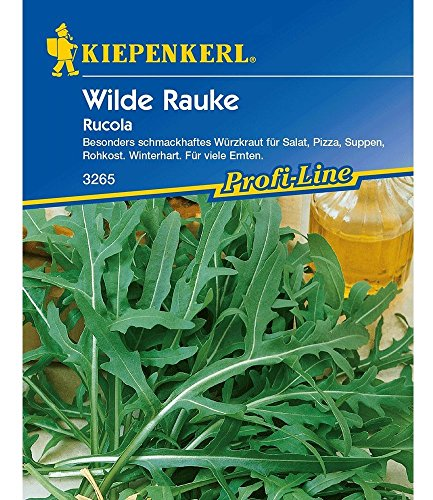 Rucola 'Wilde Rauke',1 Portion