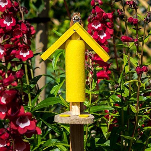 Gärtner Pötschke Abbeveratoio per farfalle Papillon