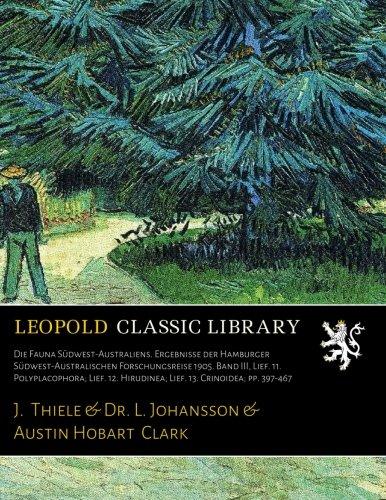 polyplacophora polyplacophora kompaktlexikon der biologie