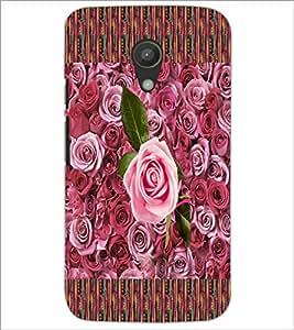 PrintDhaba Roses D-5657 Back Case Cover for MOTOROLA MOTO G2 (Multi-Coloured)