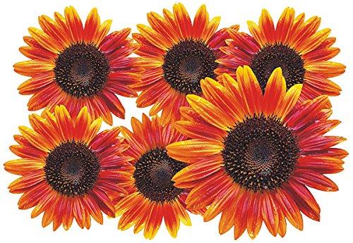 Autoaufkleber, Blumendesign: Flower Set 12-Mini-36 Stück Set Sunflower-design