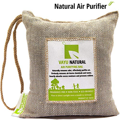 BreatheFresh Vayu Natural 100!% Activated Charcoal Dehumidifier Allergen and Odor Absorber for Cars Washrooms Closets 250g