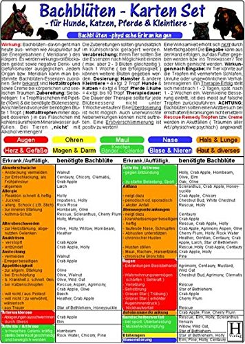 """Bachblüten-Karten Set - Tierheilkunde-Karte: Bachblüten-Karte für Hunde, Katzen, Kleintiere & Pferde """"physische Erkrankungen"""" /Bachblüten-Karte für ... & Pferde """"Verhaltensweisen & Gemütszustände"""""""