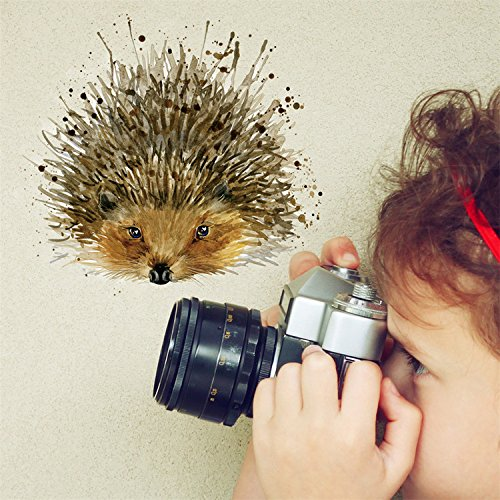 """Price comparison product image Yanqiao Watercolours Hedgehog Wall Sticker - Self Adhesive Peel & Stick For Kid's Room Removable PVC Home DIY Decor, 4.3*4.3"""""""