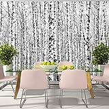 murando – Papier peint intissé – 400x280 cm – Trompe l oeil - Tableaux muraux – Déco – XXL– arbre bouleau Foret paysage nature c-A-0016-a-a