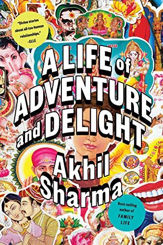 A Life of Adventure and Delight por Akhil Sharma