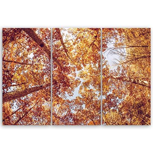 ge Bildet Bilderdepot24 hochwertiges Leinwandbild XXL - Serie Baum - Treetop - Baumkrone - 120 x 80 cm mehrteilig (3 teilig) 3141 D -