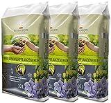 Floragard Kleeschulte Bio Blumen und Zimmerpflanzenerde 3x10 L • torffrei • fördert Blatt-und Blütenbildung • 65 % Klimavorteil • 30 L