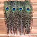 12pcs Natural Peacock Feathers - Abou...