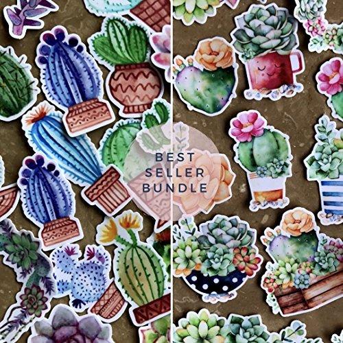 Navy Peony Aquarell Kaktus und Blumen zusammengebundene Sticker Set | kleine wasserdichte Sticker für Laptop, Skateboards und Handyhüllen | süße Sticker für Scrapbooking, Tagebuch, Planer und Zeitung