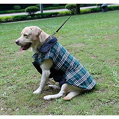 IREENUO Dog Reversible Plaid Coat Autumn Winter Warm Cozy Waistcoat British Style Dog Padded Jacket for Small Medium… 6