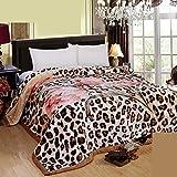 Wddwarmhome Couverture chaude d'hiver couverture de lit de chambre Couverture de couverture de russel couverture de sieste de bureau douce et confortable Taille: 200 * 230cm Couvertures