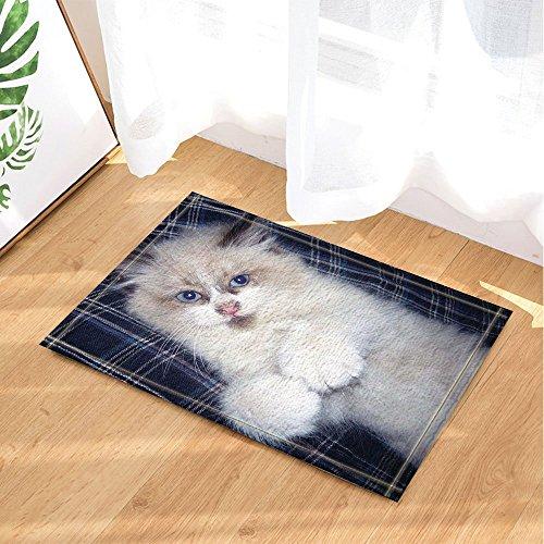 Chat décor Chat poilu blanc sur la feuille tordue du lit Tapis de bain anti-dérapant Paillasson entrées au sol Tapis de porte d'entrée intérieure extérieure Tapis de bain pour enfants 60X40CM Accessoires de salle de bains