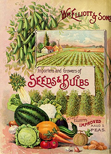 The Poster Corp Wm. Elliott & Sons Catalogue 1893 Cover with Vegetables Kunstdruck (60,96 x 91,44 cm) 1893 Cover