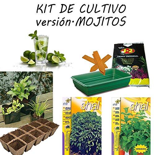 Kit de culture Version Mojito