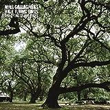 Noel High Flying Birds Gallagher'S: The Dying of the Light [Vinyl Single] (Vinyl)