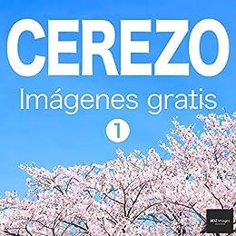 CEREZO Imágenes gratis 1 BEIZ images - Fotos de Stock Gratis eBook ...