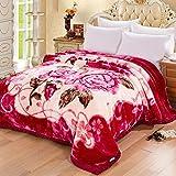 Rouge Beige Motif Floral Épaississement Raschel Couvertures Hiver Nap Sieste Double...