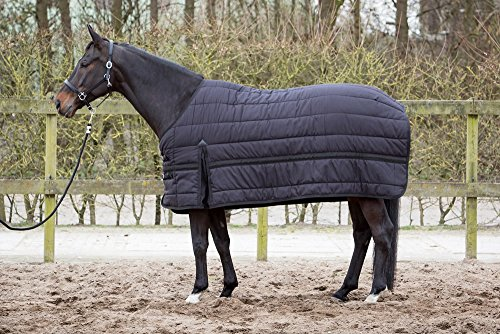 Harry\'s Horse 32200301-205 cm Unterdecke 200 g mit Fleecefutter, L