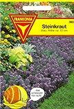 Steinkraut, Königsteppich, Lobularia maritima, ca. 100 Samen