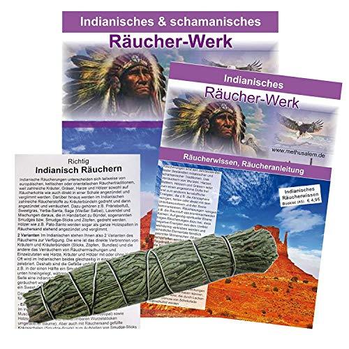 1 x ZEDER Zedernspitzen Smudge 10-12 cm Kräuter Bündel | Räuchern + Ausräuchern + Hausreinigung + Rauhnächte | 81465 -