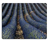 Ce tapis de souris est en matériau de haute qualité, son design simple style, mais aussi très résistant