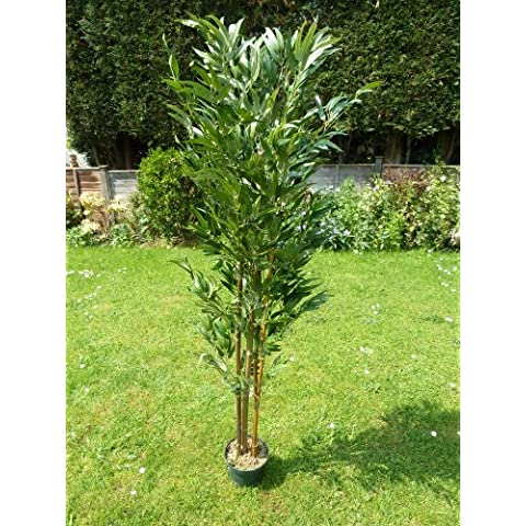 UK-Gardens - Bambù artificiale in vaso, con foglie verdi, per casa e ufficio, altezza 150 cm