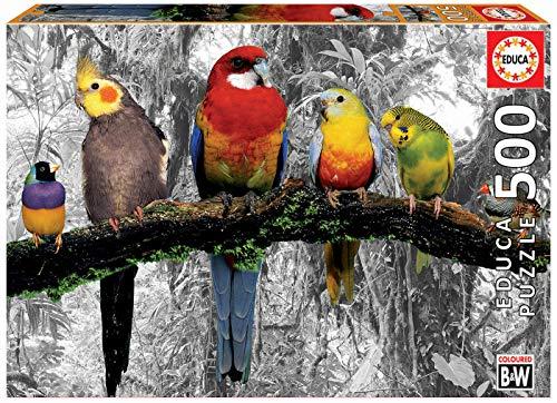 Educa Borras Puzzle Pájaros En La Jungla 500 Piezas (17984)