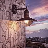 Wand-Laterne Acrylglas 28,6 cm braun | Außenleuchte rustikaler Landhaus-Stil | Wandlampe antik | Terrassenbeleuchtung | Außenwandleuchte E27 + Wandleuchte IP44 + winterfest + dimmbar