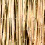Canisse en Canne de Bambou - 4m x 1m