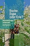 Esche, Espe oder Erle? (Bestimmungsschlüssel) - Peter Steiger