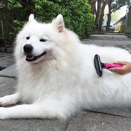 Hundebürste TaoTronics 3-in-1 deShedding-Unterwollbürste Fellkamm für Hunde und Katze - 6