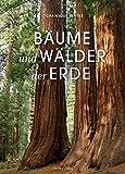 Bäume und Wälder der Erde - Dominique Seytre