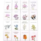 32 Set di biglietti d'auguri bianchi floreali con buste - Confezione multipla per tutte le occasioni Biglietti di compleanno