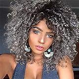 Graue Kurze Afro verworrene gelockte Perücken für Schwarze Frauen gemischte Ombre Perücke dunkle Wurzeln mit Pony Haar, Grey