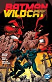 Batman / Wildcat