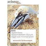 Mysteriöse Massensterben: Warum Vögel vom Himmel fallen und Krabben an die Strände gespült werden