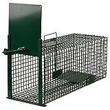 Moorland Trappola stabile e robusta animali vivi 60x23x23cm efficace gabbia per catturare gattini volpi lepri Safe 5001