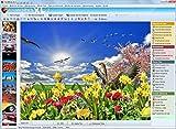 FotoWorks XL (2018) - Editor de Fotos, Software Fotografia Español, Edición Fotográfica, Editar Fotos, Programa Fotos - Muy fácil de usar