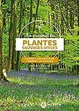 À la découverte des plantes sauvages utiles -Comment les identifier, comment les utiliser