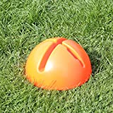 Bild: KombiXFuß in 4 Farben für Agility  Hundetraining orange