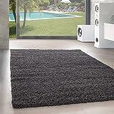 Unbekannt Shaggy Hochflor Langflor Teppich Wohnzimmer Carpet Uni Farben, Rechteck, Rund, Farbe:Grau, Größe:160x230 cm