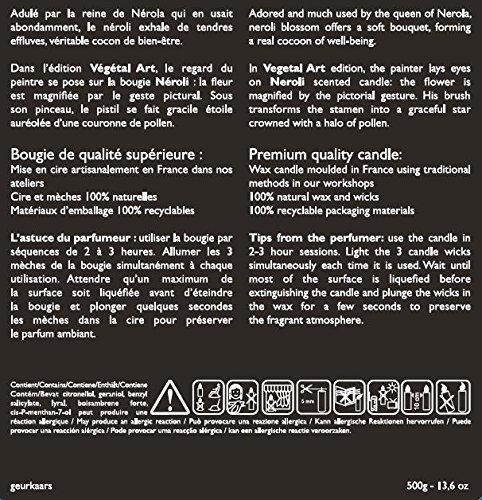 esteban paris duftkerze vgtal art neroli 500 gr limitierte edition my. Black Bedroom Furniture Sets. Home Design Ideas