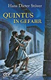 Quintus in Gefahr: Roman