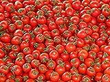 Süße Cherry Tomaten Samen Saatgut für Tomaten Cocktailtomaten Cherry Cherrytomaten Tomatensamen Samen Saatgut Pflanzen für Garten und Gewächshaus