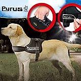 Hundegeschirr, PYRUS K8 Nein Gurtverstellsystem Hundeleine Gepolsterte Hundelaufgeschirr Heavy Duty für Hunde (M)