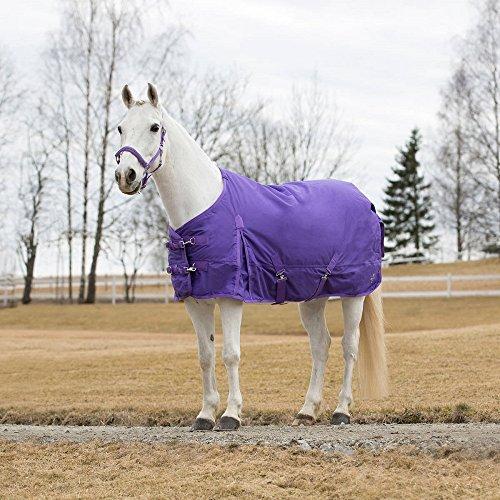 netproshop Pferde Regendecke 600D für Winter Gefüttert Auswahl, Groesse:85, Farbe:Lila
