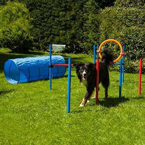 Bild von: Dog Agility Set K2 PRO