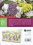 Image de Flores y plantas de rocalla (Tu Jardín)